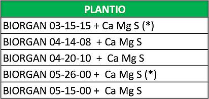 plantio-